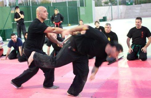 El Shihan Pedro Fleitas mostrando una técnica con el Shihan Pedro Zapatero