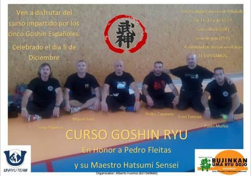 Evento Solidario Goshin Ryu 2015